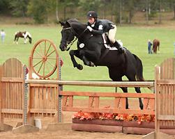 horse-jumper